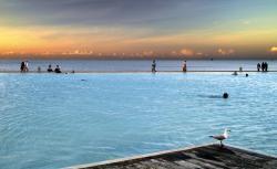 Cairns lagoon 3b